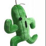 Kaktus_JB