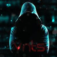 `VnTs